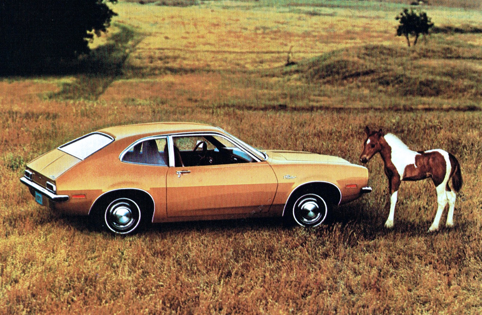 1971 Ford Pinto Horses