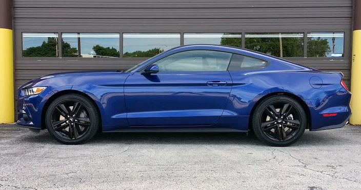 2015 Blue Mustang, profile