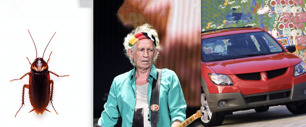 Cockroaches, Keith Richards, and the Pontiac Vibe